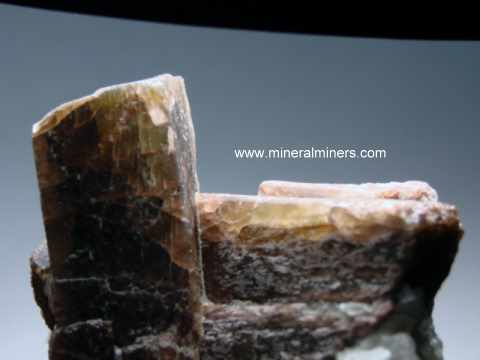Andalusite Mineral Specimens: andalusite crystals with matrix