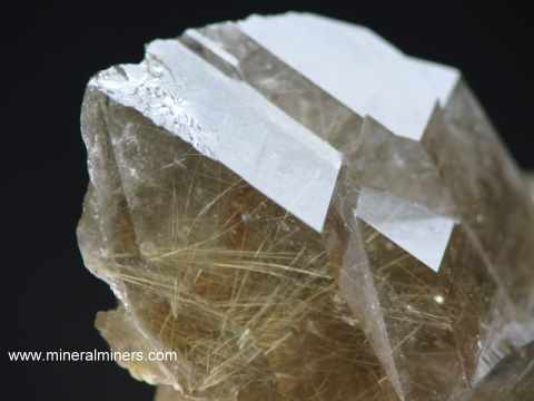 Golden Rutilated Quartz Mineral Specimens